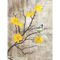 """Lamps Plus Gray Birds I 24"""" High Giclee Print on Canvas Wall Art ($135) ❤ liked on Polyvore featuring home, home decor, wall art, backgrounds, art, flowers, pictures, fillers, yellow and yellow canvas wall art"""