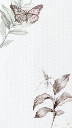 Butterfly Background, Flower Background Wallpaper, Butterfly Frame, Flower Backgrounds, Watercolor Background, Watercolor Flowers, Tree Wallpaper Iphone, Animal Print Wallpaper, Graphic Wallpaper