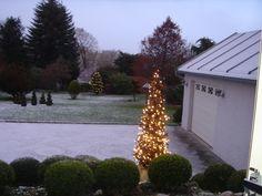 Træet er lavet gren stumper og pyntet med lys.