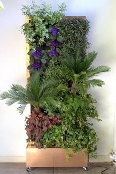 Plants On Walls | Vertical Garden Blog | Page 4