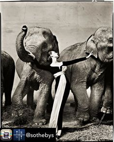 Richard Avedons Dovima with Elephants Evening Dress by Dior Cirque dHiver Paris August 1955 is a monument in the history of #fashion photography. Arguably no other fashion photograph of the 20th century is as widely recognized and no other image fully illustrates Richard Avedons gifts as a photographer of couture and women. The brilliant juxtaposition of the classically elegant Dovima with the toweringly rough forms of the elephants is as revolutionary today as when it was first published by…