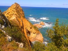 Karitane Headland — Insiders Dunedin