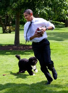 The Obamas and Bo