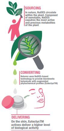 An all-#natural approach from #sourcing to delivering: http://www.naturex.com/Trend-corner/PDF-Flipbook/Revolutionizing-sustainable-botanical-beauty