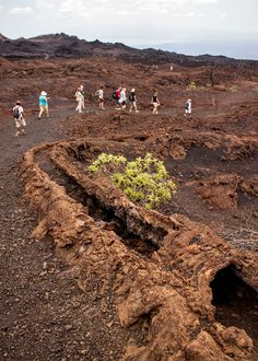 Hiking volcanoes in the Galapagos! #ecuador #galapagos #travel