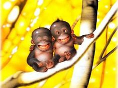 なんて笑顔の可愛いお猿さん