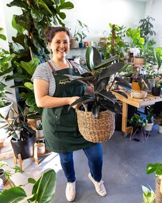 Evergreen Studio Indoor Plant Nursery in Perth, WA wear Cargo Crew Tom Bib Aprons in Forest Green | Gardening Apron | Florist Apron | Plant Nursery Uniform Bib Apron, Aprons, Forest Color, Gardening Apron, Workwear Fashion, Plant Nursery, Perth, One Size Fits All, Evergreen