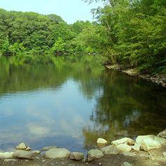 Pond Fishing Tips. Find local schools and teachers on EducatorHub.com