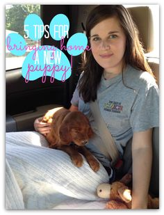 5 Tips for Bringing A Puppy Home because TODAY IS THE DAY! My baby gets to come home:D