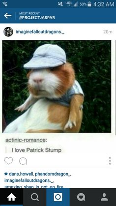 NO FUCKING WAY THERE ACTUALLY SOMETHING SAYING THIS GUINEA PIC WAS PATRICK FUCKING STUMP! *dies of happiness*