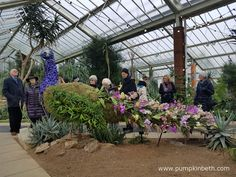 From Saturday the February until Sunday the March The Royal Botanic Gardens, Kew are hosting their Orchid Extravaganza! This year, Kew Kew Gardens, Botanical Gardens, Growing Plants, Cut Flowers, Surrey, Floral Arrangements, Orchids, Behind The Scenes, Planting