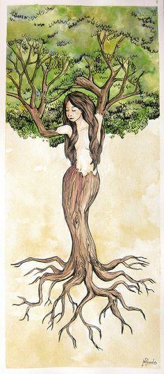 El árbol de la vida | Flickr: Intercambio de fotos