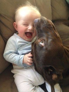 Because dogs make kids happy!