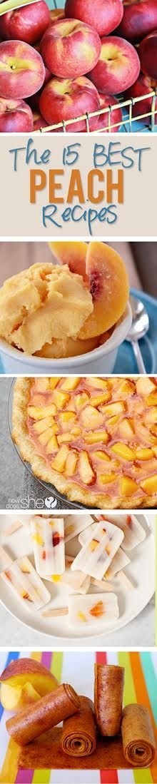Oh, juicy delicious peaches, it is your time to shine! Nothing beats fresh peaches and there are so many scrumptious ways to use them. We've scoured the digital universe for the absolute BEST peach recipes for your own viewing and baking pleasure. Enjoy!