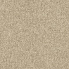 Tweed Soothsayer: 38051 is part of the DecorArt Rejuvenations Ambigu HET line from Armstrong Flooring - Commercial. View specs & download a sample.