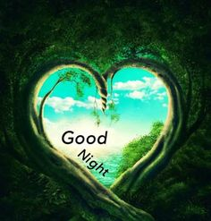 Good Night Images Download For Whatsapp Good Night Funny, New Good Night Images, Romantic Good Night Image, Lovely Good Night, Good Night I Love You, Beautiful Good Night Images, Good Night Sweet Dreams, Good Night Moon, Good Night Greetings