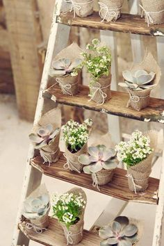 Creative Wedding Favors Ideas to Consider Using For Your Wedding - Savvy Wedding Decor Backyard Wedding Decorations, Decoration Party, Succulent Favors, Deco Floral, Lace Weddings, Country Weddings, Romantic Weddings, Unique Weddings, Wedding Favours