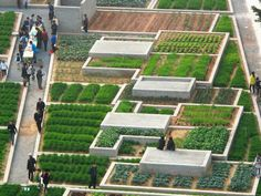 Value Farm is an amazing urban agriculture project in China by Thomas Chung that encourages local people to participate in a collective effort.
