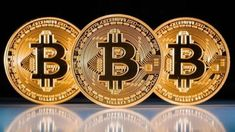 Namecoins to bitcoins for sale betting sites that accept paypal