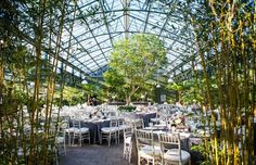 Kimberly + David's Spring Wedding at Planterra Conservatory | Photos by: Laurie Tennent