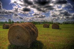 Straw Wheels by empyrean_squire, via Flickr