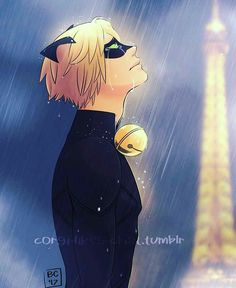 poor Chat...he's thinking of ladybug again and he wishes she could love him