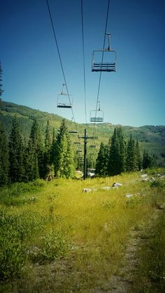 Solitude Mountain Resort under Sunrise chairlift ♡ Solitude,  UT