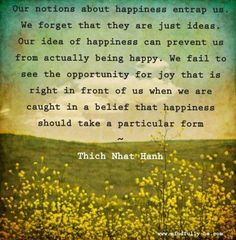 """Thich Nhat Hanh can teach us a thing or two. Don't get caught up with what you think """"should be"""" and focus on what feels right. Let go of the notion that things always come in a particular form and allow yourself to vibe naturally. You'll find yourself smiling more often if you don't have some sort of preconceived idea about what happiness is to everyone and then attempt to find it. Don't. It's often right there in front of you. Don't restrict yourself in search for happiness, it is whatever…"""