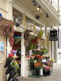 A beautiful place to buy flowers in Noe Valley! Also just a great place to look and smell them. Is fun to sit at the bakery (shop not shown to left of this) and watch kids stop and smell the roses!