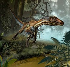 Utahraptor ostrommaysorum, a larger cousin of the famous Velociraptor from North America. Also a member of the Dromaeosaur family, grew to 1.8-2.0 meters tall, 7 meters long and weighed 500 kilograms. Even larger than the 'Raptors' from Jurassic Park.
