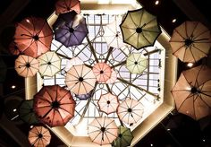 I really like the images of floating umbrellas, or ones viewed from above.