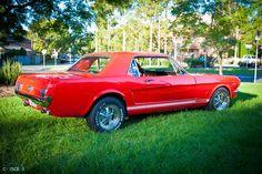 1966 Ford Mustang (No Badge)