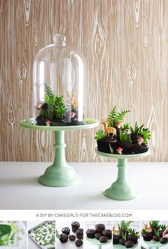 DIY Cupcake Terrarium