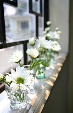 I Love daisies! #flowers