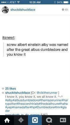 Alby (maze runner) was named after albus dumbledore (Harry potter). This just made my day!