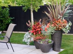 Container Gardening Magazine, 2012 Edition - Beautiful grouping by Pot Incorporated
