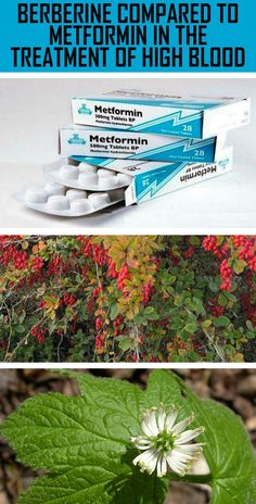 what is metaformin used for