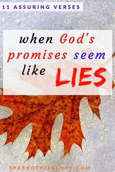 11 Assuring verses when God's promises see like lies. At the intersection of faith and reality, sometimes we doubt God's promises. Check out these powerful verses assuring that we can trust our God. We won't be ruined.