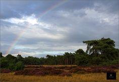 De Hoge Veluwe Nationaal Park