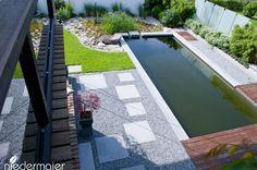 Naturpool im Lounge-Garten - Gartendesign