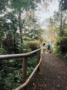 Road to Nungnung Waterfall, badung - bali