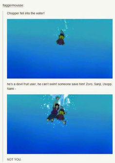 Get out of the water!!