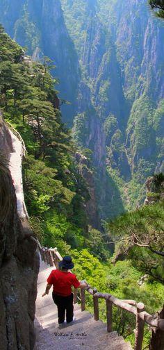 Huangshan Paths, China