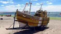 Puerto Madryn a través de mi lente