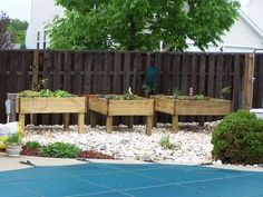 Raised Garden Beds...