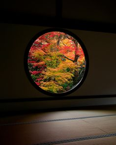 "(Kyoto, Japan) This really calms me down. I think the Japanese had it right when they said that ""A round window give you peace when looking the outside nature. Square windows interrupt this peace, is aggressive and give a stress sensation"" Kyoto Japan, Japan Japan, Japanese Design, Japanese Art, Japanese Gardens, Japanese Architecture, Japanese House, Parcs, Japanese Culture"