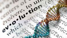 CONVERSAÇÃO - comunicação e educação previdenciária: CBS PERTO DE VOCÊ FAZ EVOLUIR DNA DA EDUCAÇÃO PREV...