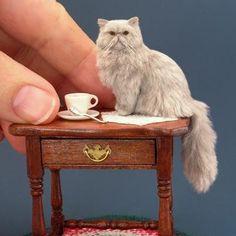 Persian Cat by Kerri Pajutee