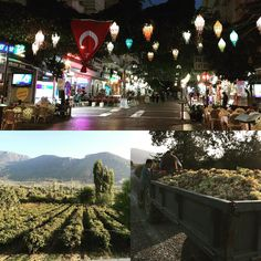 """""""The diversity of Kusadasi in one image. From the valleys of Kirazli to the streets of downtown Kusadasi, the diversity is just 5 minutes away. #kusadasi #kirazli #winevalley #hills #panorama #destinations #turkey #instaturkey #winemakers #nightlife"""""""