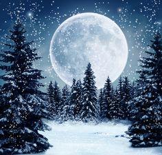 peisaje de iarna - Căutare Google